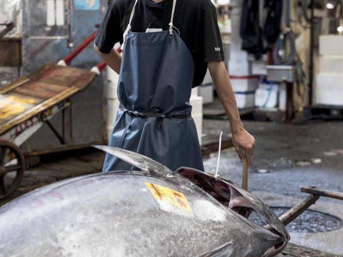 Working on Tokyo fish market